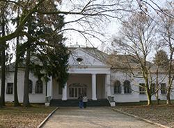Serbian castle